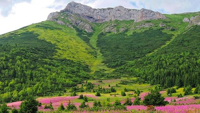 Torby turystyczne – Jakie wybrać w góry?